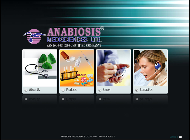 Seo Amp Web Design Portfolio Online Web Design Portfolio